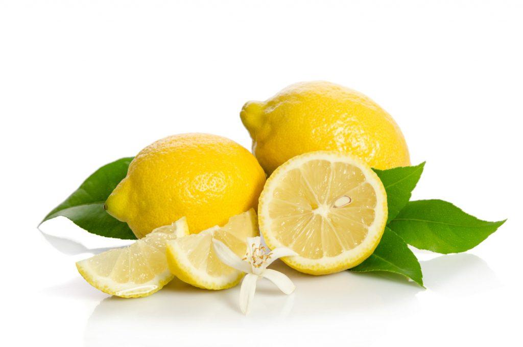 citroenplant kopen